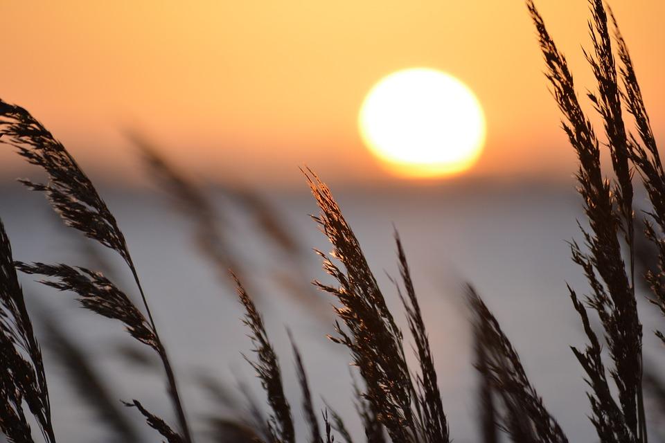 sun stand still.jpg