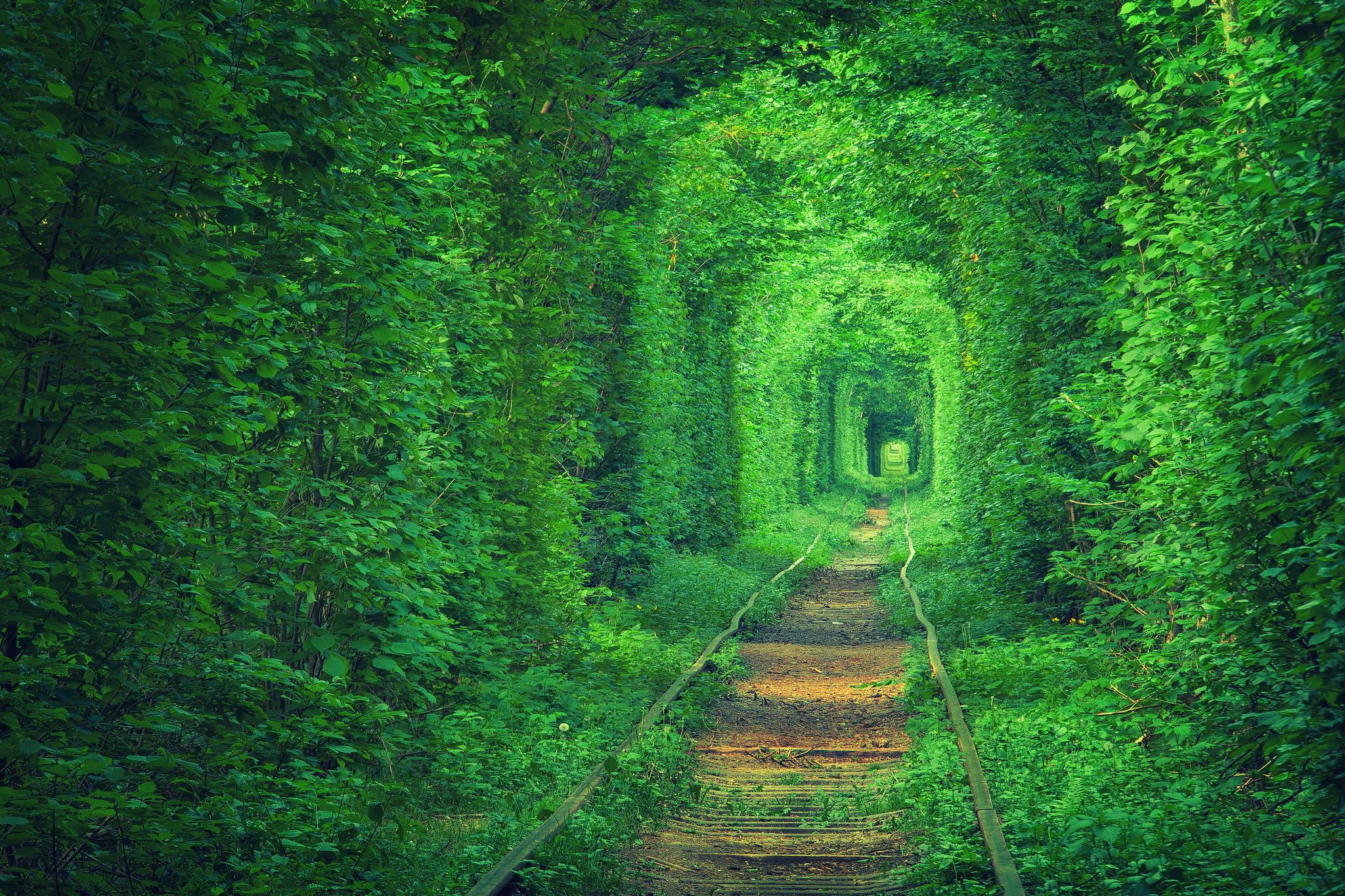 Tunnel of Love, Ukraine.