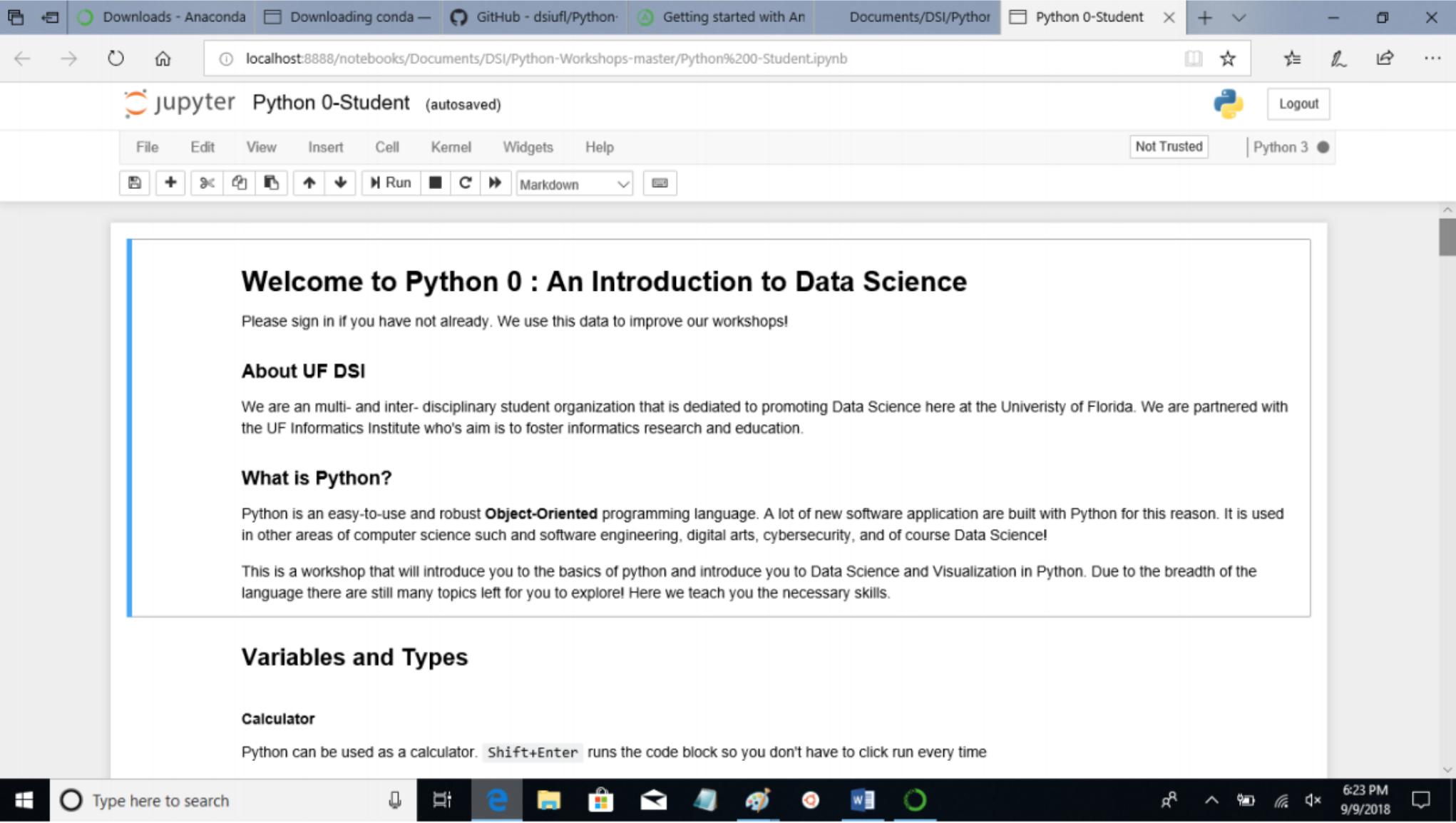python6.jpg