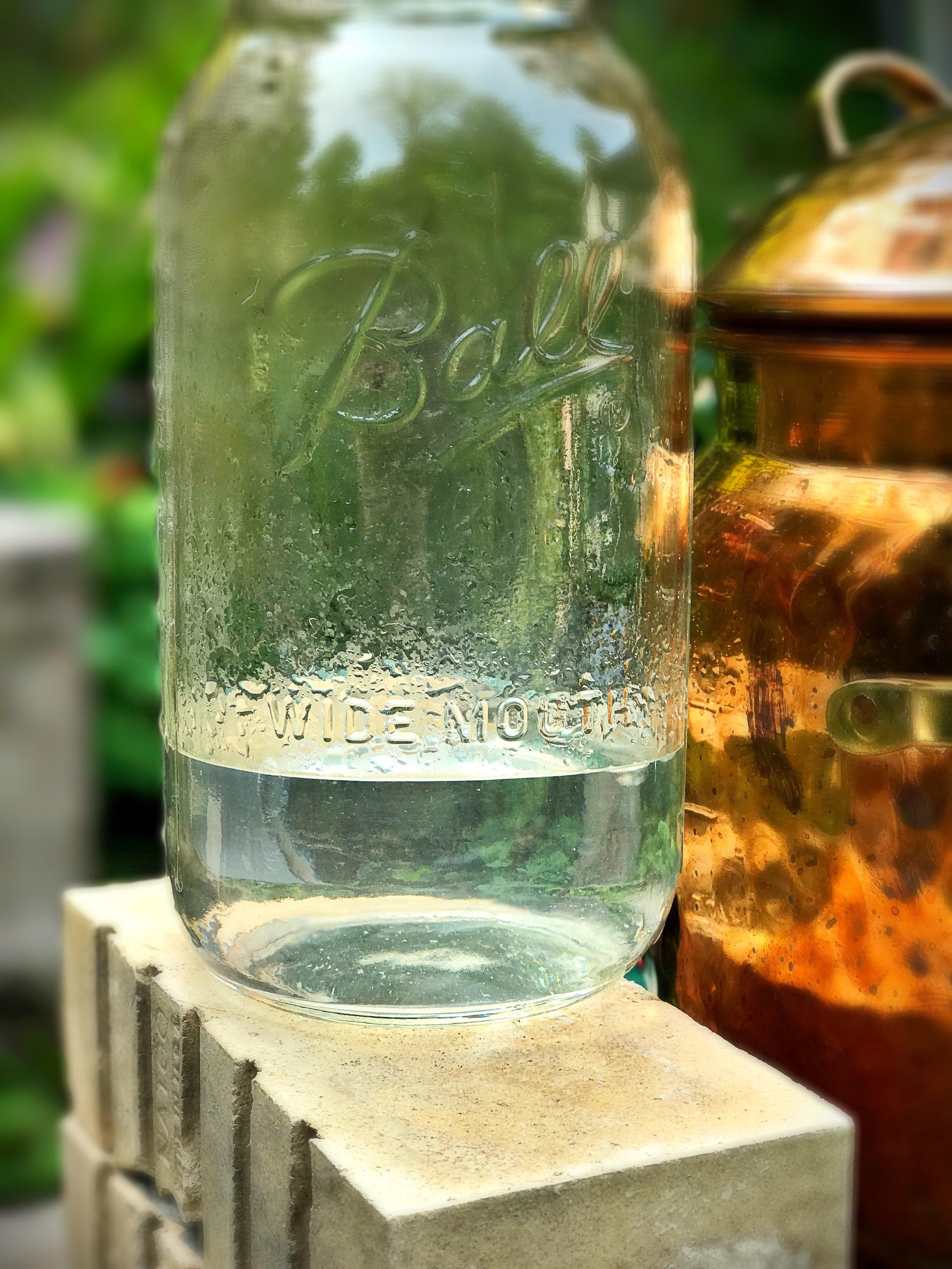 Halfway through the distillation. Lemon balm (Melissa officinalis) hydrosol is illuminating my vitality.