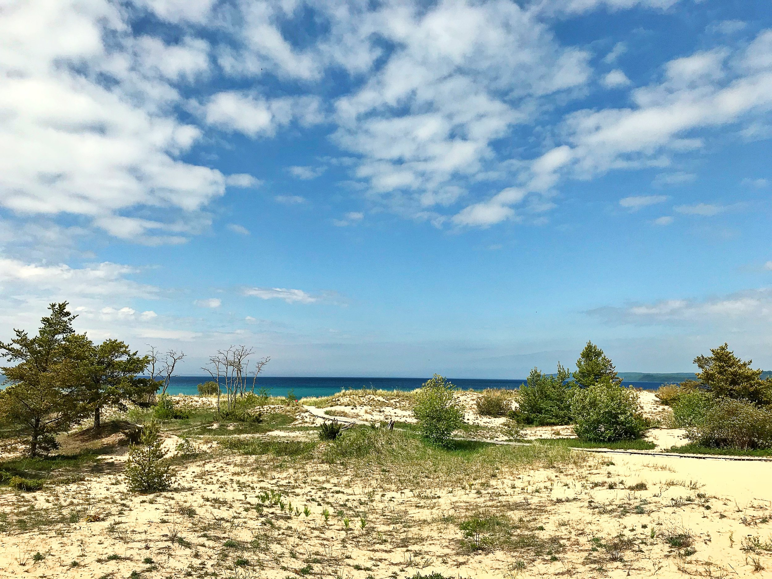 My first views of the dune habitat and the pristine waters of Lake Michigan. DH Day campground, Sleeping Bear Dunes National Lakeshore, MI.