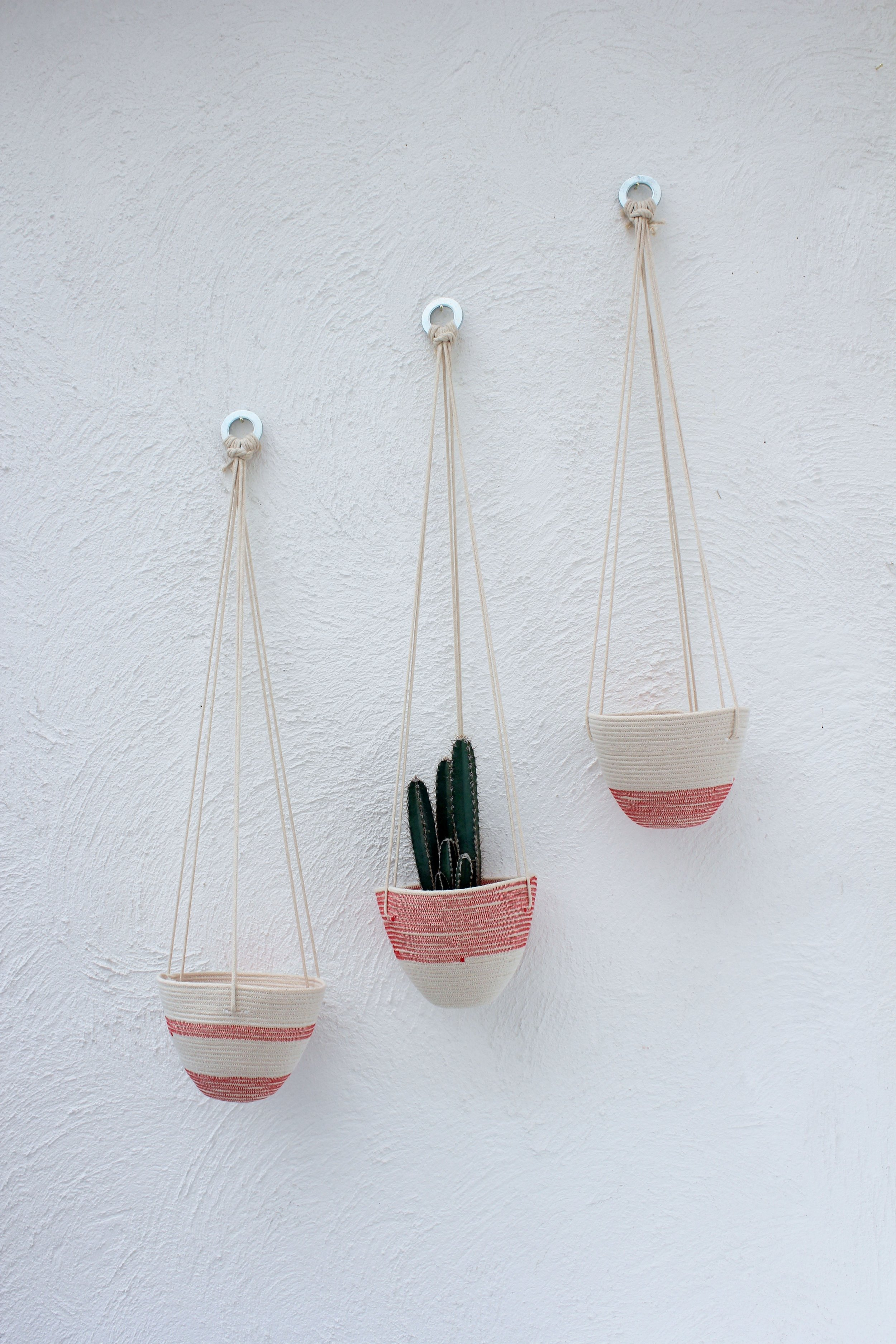 Refined hanging baskets 2017