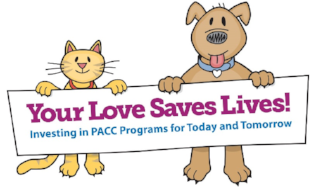 Your Love Saves Lives Logo