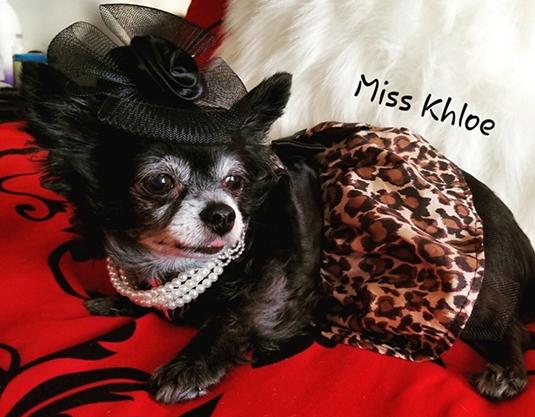 MS Khloe 2.jpg
