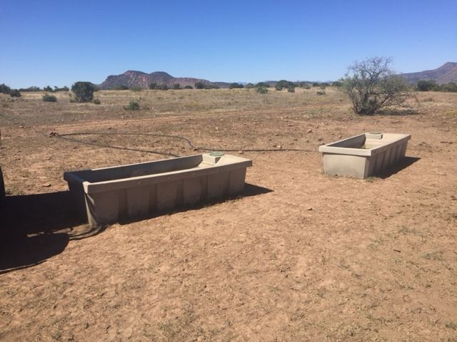 Trough-250 for Wildlife and Cattle in Arizona