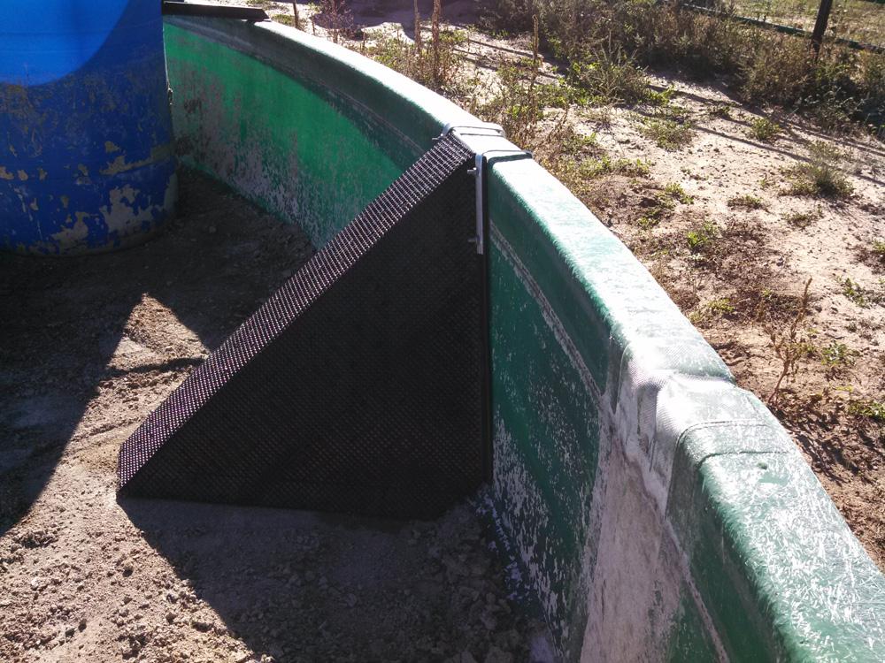 Single Escape Ramp in Empty Water Trough