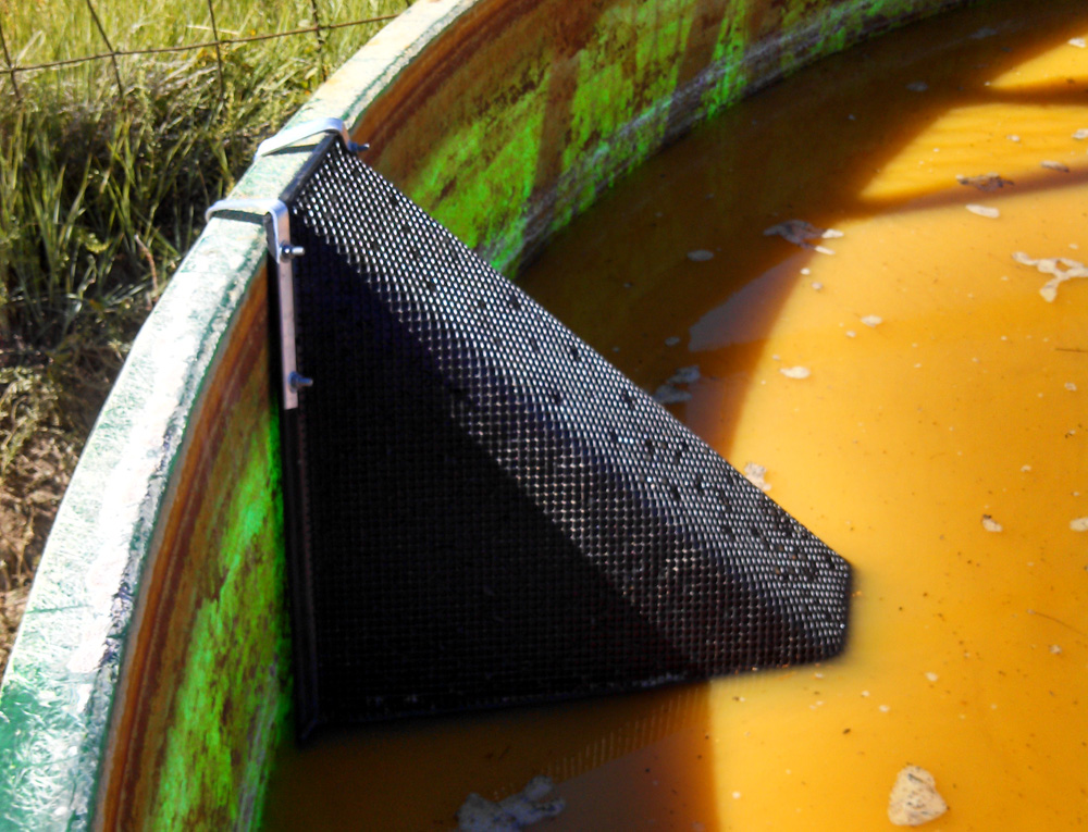 One Escape Ramp In Half Full Water Tank