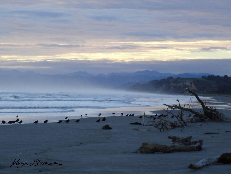 Dawn at Opotiki