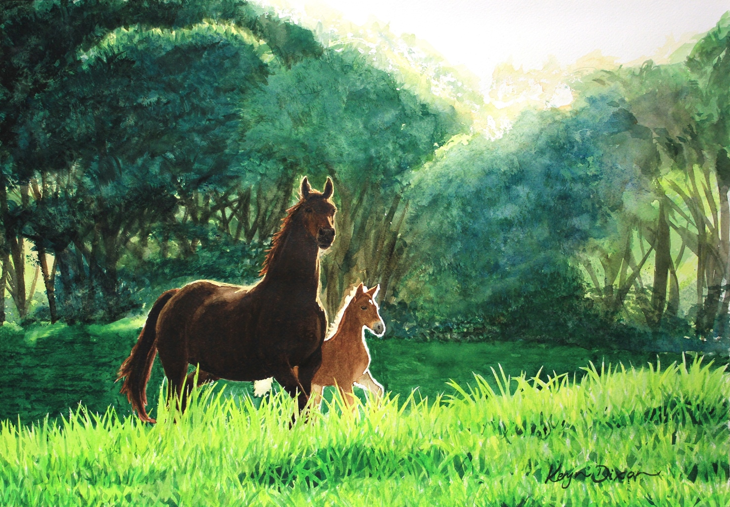 Sunlit Mare and Foal. Watercolour. $1000 ((Larger than A3)