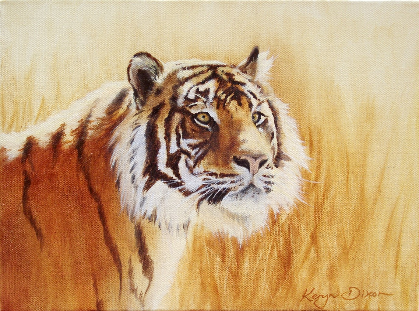 Tiger in grass. Oil on canvas. Original $400 (Approx A4 size)