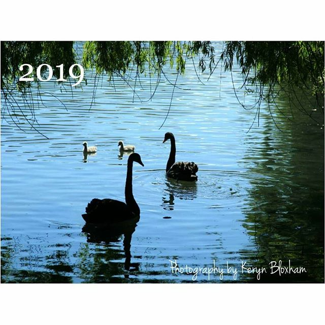 ⠀⠀⠀⠀⠀⠀⠀⠀⠀ 2019 photography calendars are ready to print!⠀⠀⠀⠀⠀⠀⠀⠀⠀ Swipe to see the 12 images in the calendar.⠀⠀⠀⠀⠀⠀⠀⠀⠀ ⠀⠀⠀⠀⠀⠀⠀⠀⠀ If you would like one, just comment and message me ☺ $30 each including postage in New Zealand.⠀⠀⠀⠀⠀⠀⠀⠀⠀ ⠀⠀⠀⠀⠀⠀⠀⠀⠀ Check back tomorrow for my art calendar images!⠀⠀⠀⠀⠀⠀⠀⠀⠀