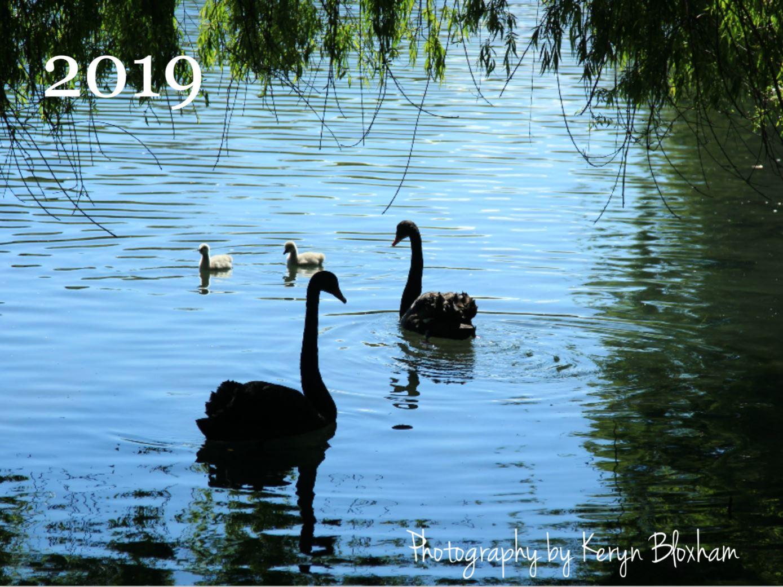 2019 photography calendar front.JPG