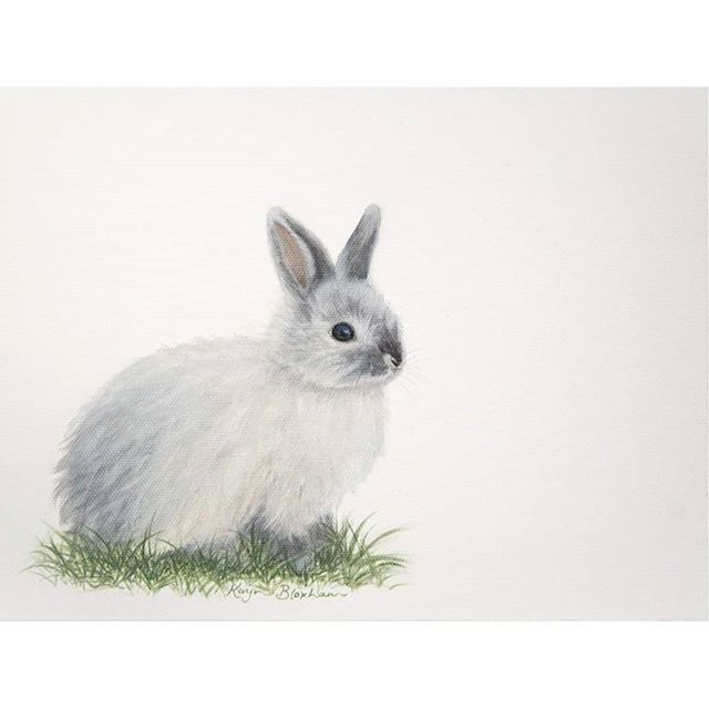 "This is an oil painting that I did of my precious bunny that we called Belle. ⠀⠀⠀⠀⠀⠀⠀⠀⠀ My husband was the first one who saw her at a pet shop, and he knew I would react when I set eyes on her.  And I did... I immediately said, ""I want it!!"" She was a cute little ball of fluff, small enough to sit in the palm of your hand. ⠀⠀⠀⠀⠀⠀⠀⠀⠀ We brought her home that day, and she was friendly and had such a cute (and slightly cheeky) personality. ⠀⠀⠀⠀⠀⠀⠀⠀⠀ She also needed a fair bit of brushing, being a Jersey Woolly, but back then I had no kids and had time to enjoy that! We would take her for drives in the car, which she seemed to love, and walks, tucked in my jacket. ⠀⠀⠀⠀⠀⠀⠀⠀⠀ We took quite a while to name her, as I felt she needed a special name, and one day my husband said, ""She needs a name"" ... So we sat down and started thinking up ideas. After a while I thought, ""Ballerina"", but I didn't say it because I thought it was a bit silly, then Steve said, ""how about Ballerina?"" so that settled it! ⠀⠀⠀⠀⠀⠀⠀⠀⠀ Unfortunately she got very sick after our son was born when we were away on holiday about 4 years ago. I grieved a lot over her, but I take comfort that she is waiting for me in heaven. And yes I do believe that our beloved pets are waiting for us there ☺ ⠀⠀⠀⠀⠀⠀⠀⠀⠀ Long story short, I painted her when I was teaching a student to paint in oils... His painting is super cute too, I might share that in a story another day! ⠀⠀⠀⠀⠀⠀⠀⠀⠀ And if you have a pet that you would love a painting of, check out my pet portraits highlight from my story or contact me ☺ ⠀⠀⠀⠀⠀⠀⠀⠀⠀"