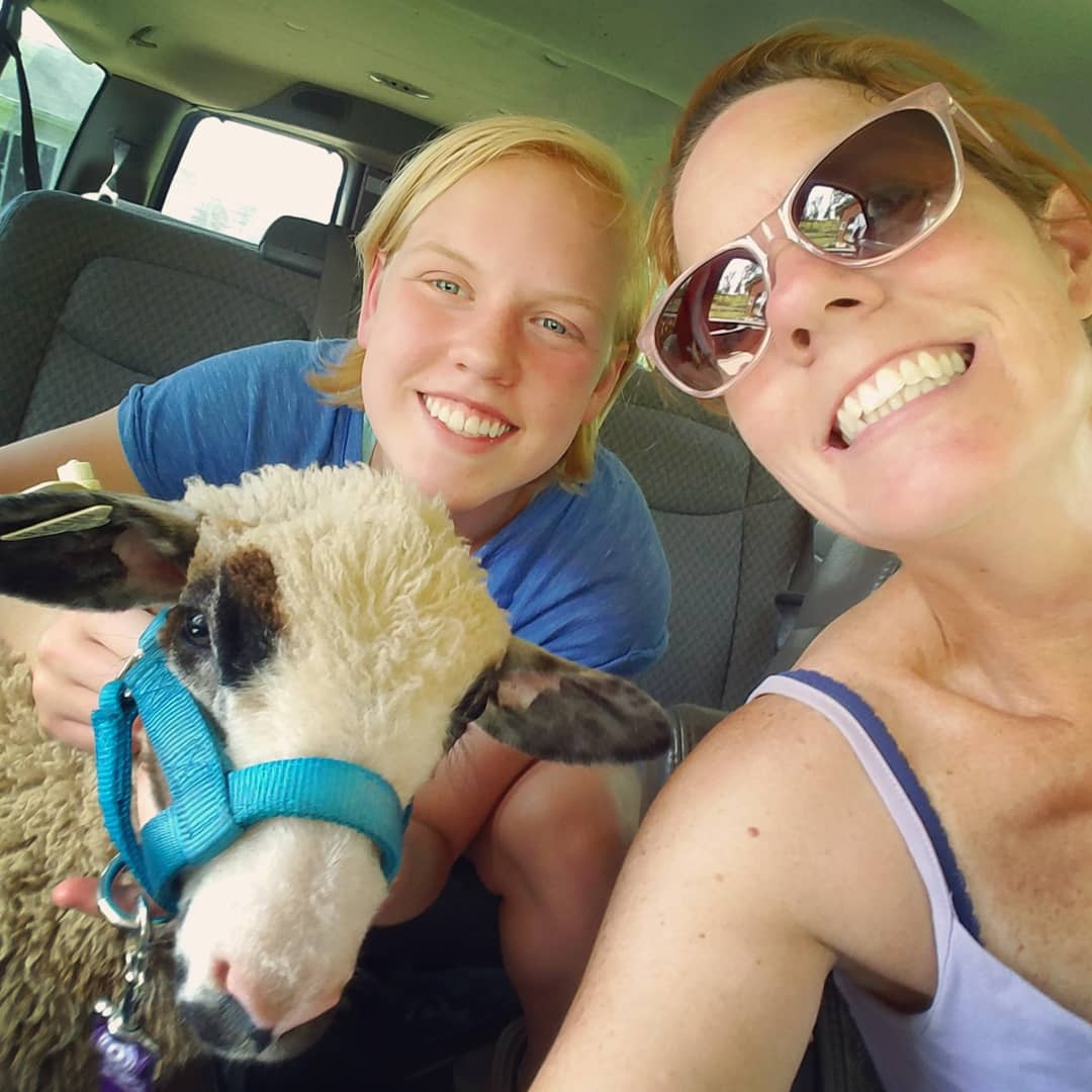 """Taking Darling to a """"Farm day"""" at a local school to teach future farmers about the importance of heritage breeds"""
