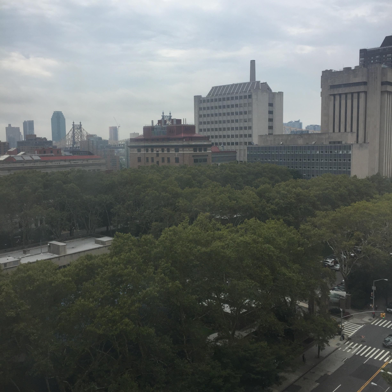 hospital room view.jpg