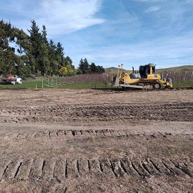 Breaking ground on our new #Chardonnay planting on Ward Valley Estate vineyard. Exciting times! . #wardvalleyestate #chardonnay #pinotnoir #vineyard #winemaker #vigneron #boutiquewinery #nzwine #marlborough #ward #winery #nz #newzealand #smallbatch