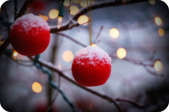 peaceful-berry-ornaments.jpg