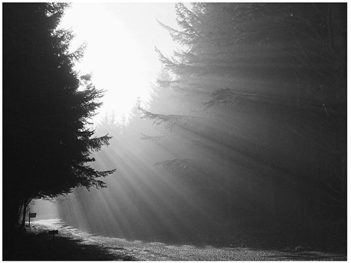 Smokey Light.jpg