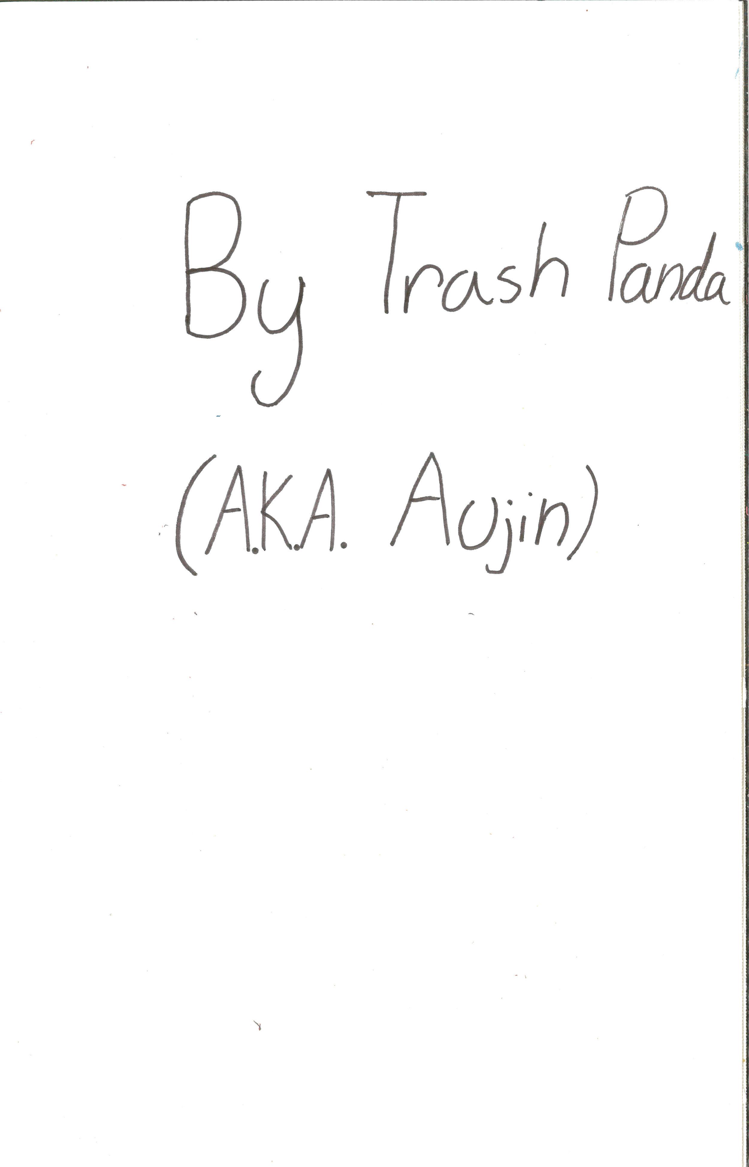 Trash Panda 2.jpg