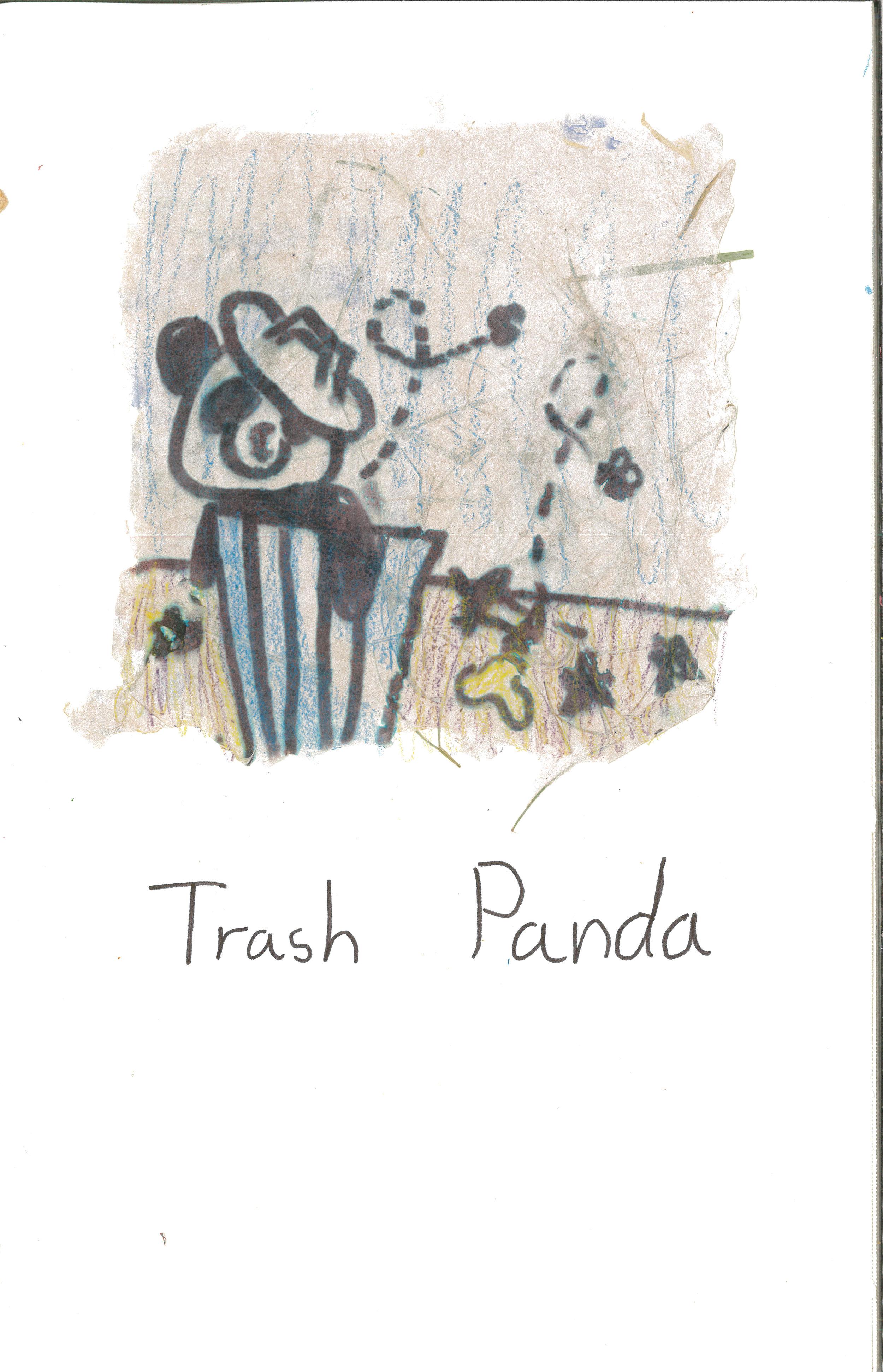 Trash Panda 3.jpg