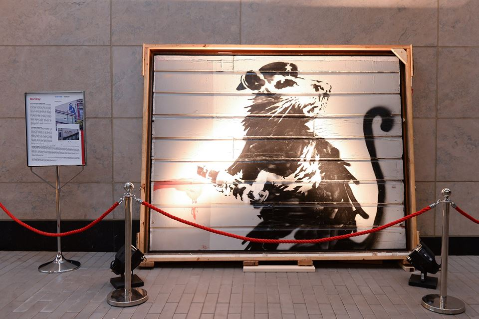 """The """"Haight Street Rat,"""" a Banksy piece preserved by prominent art collector Brian Greif, leans agains a wall on display in Toronto, Canada."""