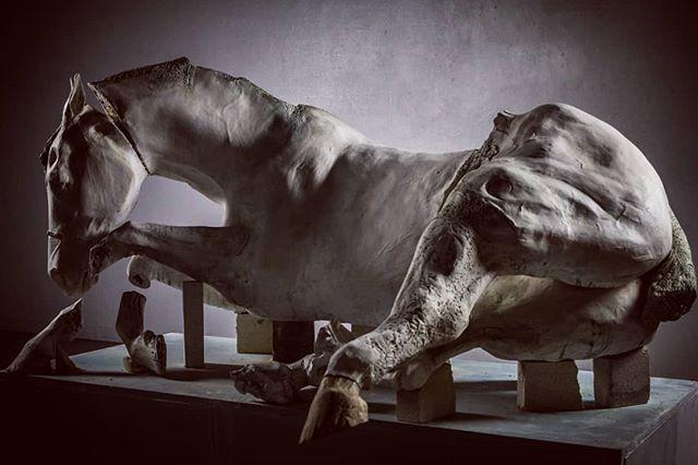 | Asunder |  #ceramics #ceramic #clay #mica #ceramicsculpture #sculpture #horse #ceramichorse #horsesofinstagram #pennstate #uwklay #ceramaland #pennstatesculpture @psuceramics