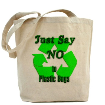 noplasticbag.jpg