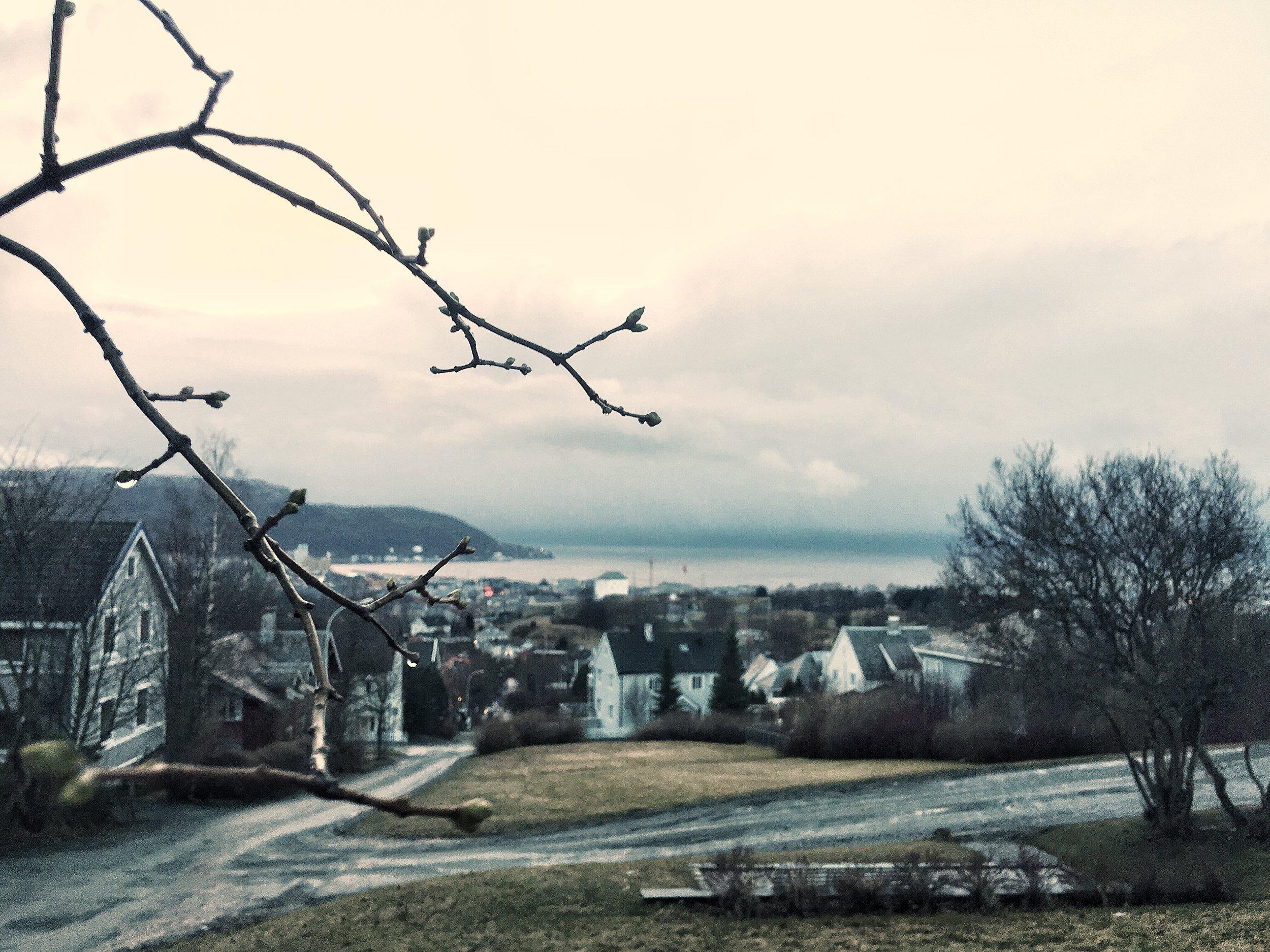 Trondheimvejr. Det er bare at komme ud ik.
