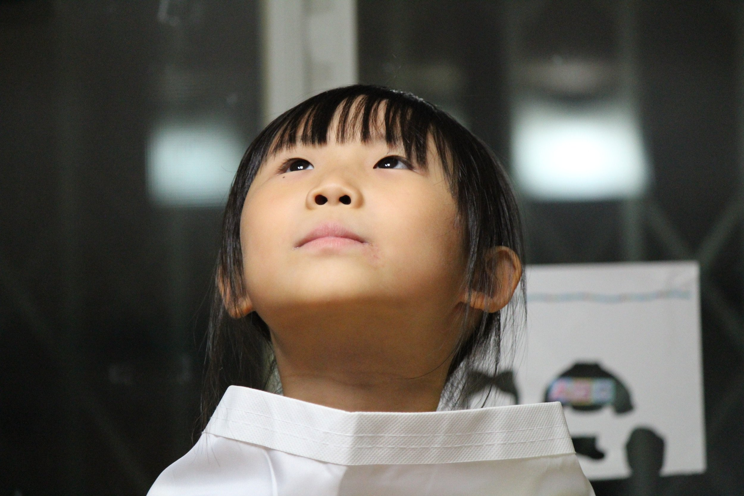 asian-child-curious-48124.jpg