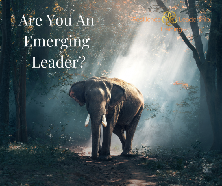 Empowering_Success_blog_Are-You-An-Emerging-Leader.png