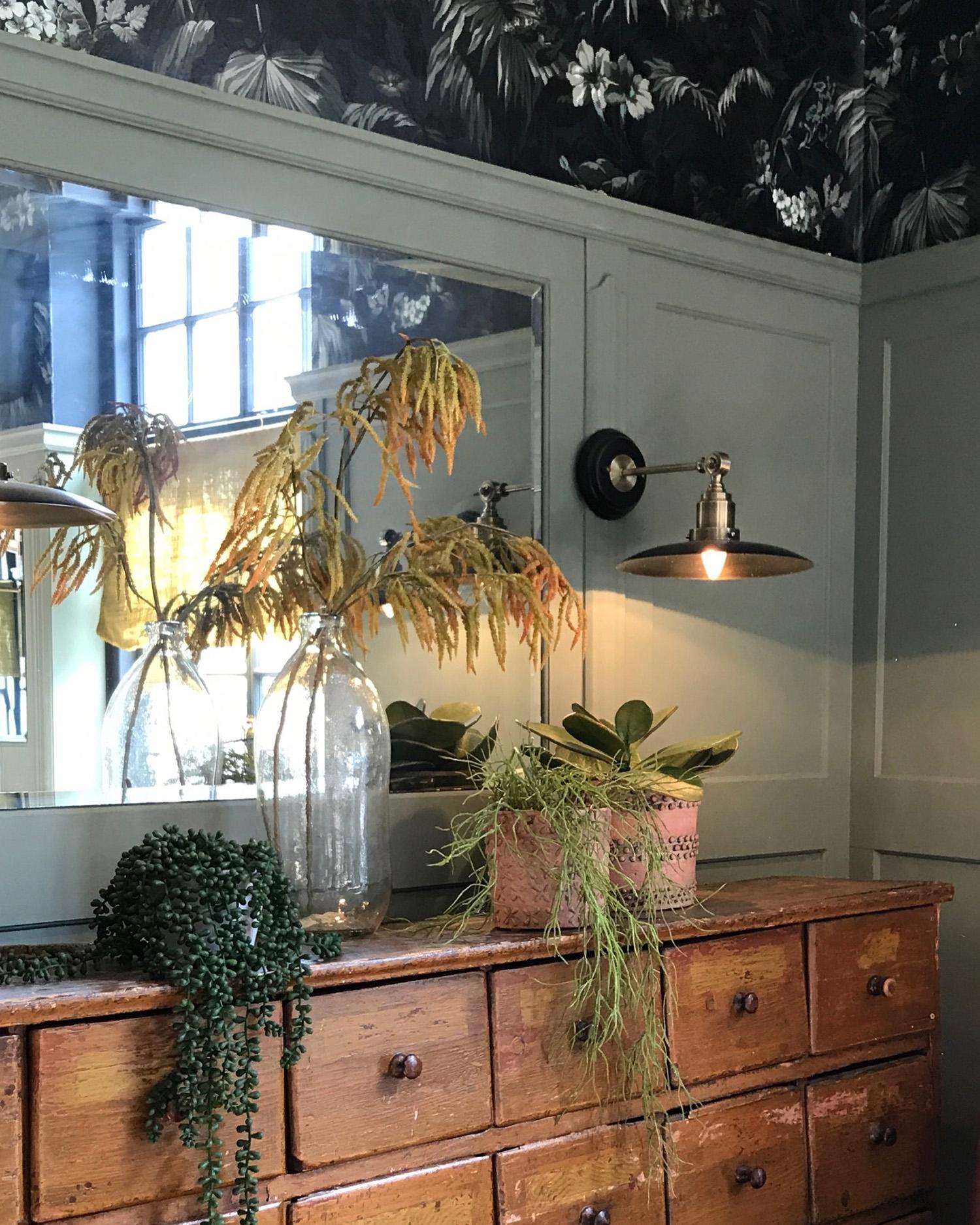 Bumpkins drawers and plants.jpg