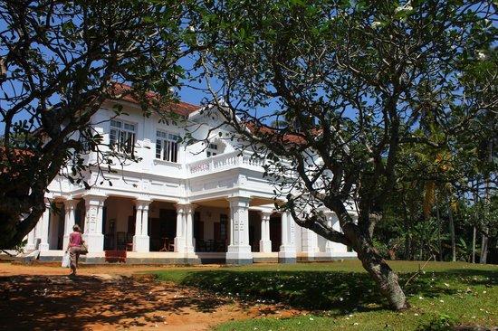 villa-de-zoysa (1).jpg