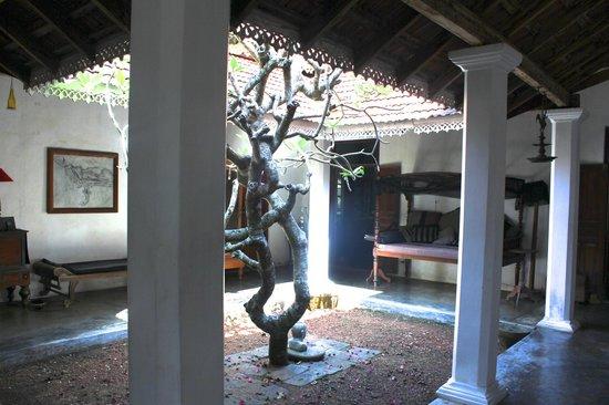 villa-de-zoysa (4).jpg