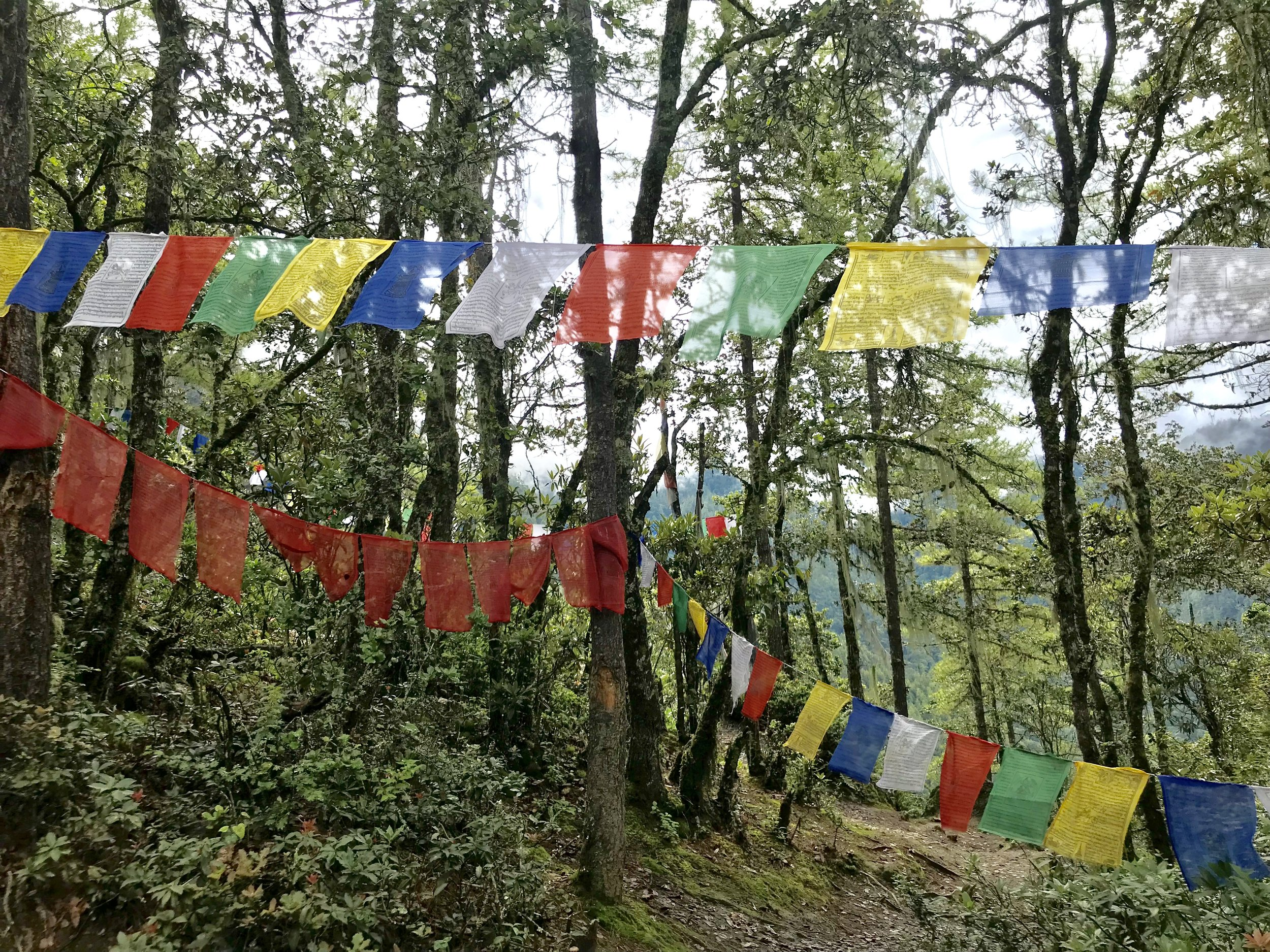Image author's own, Paro. Bhutan.