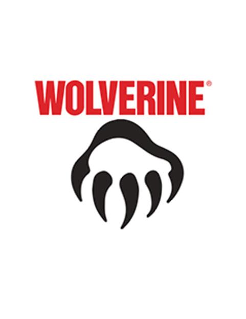 wolverine 01.jpg