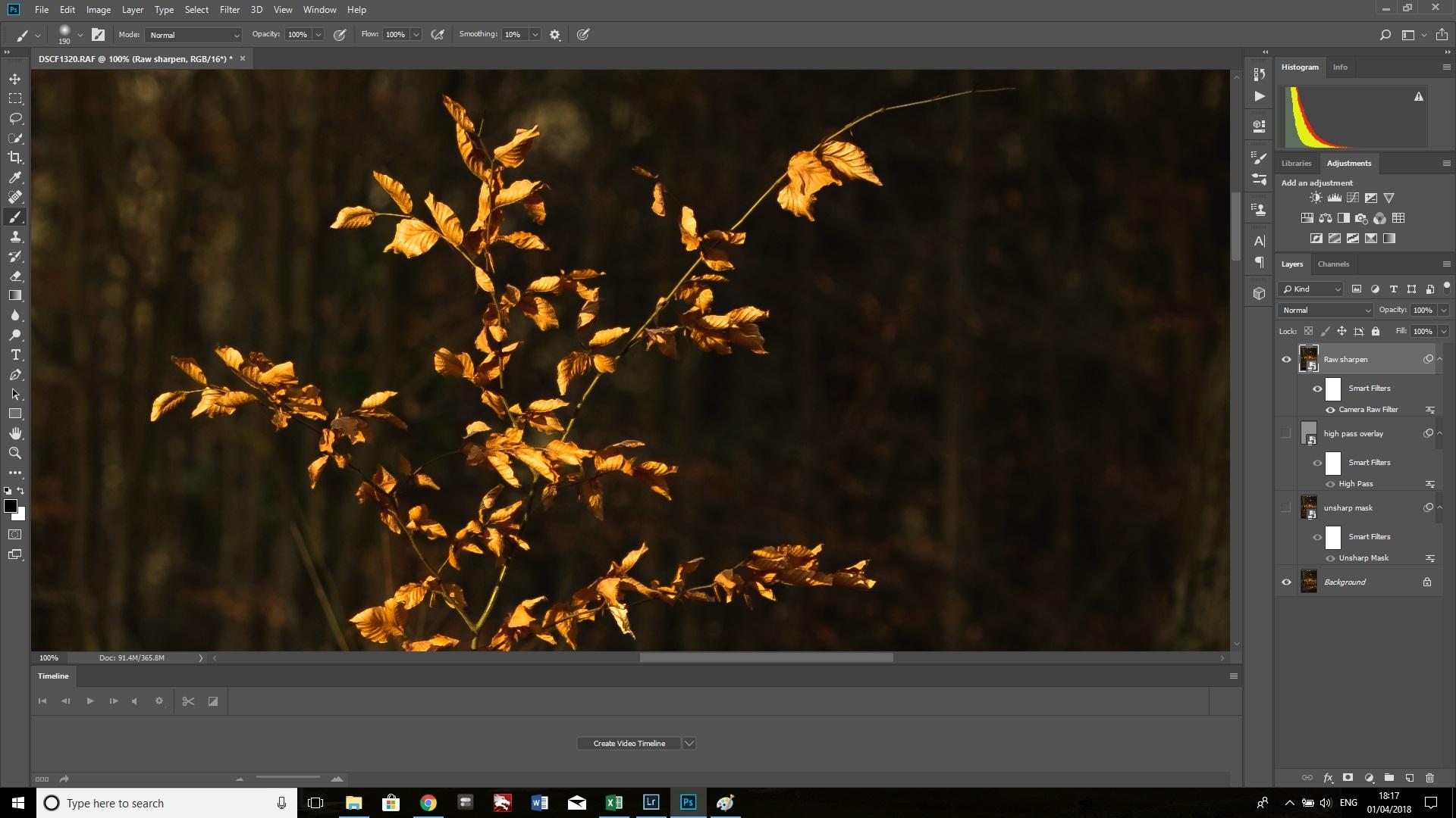 raw sharpen branches.jpg