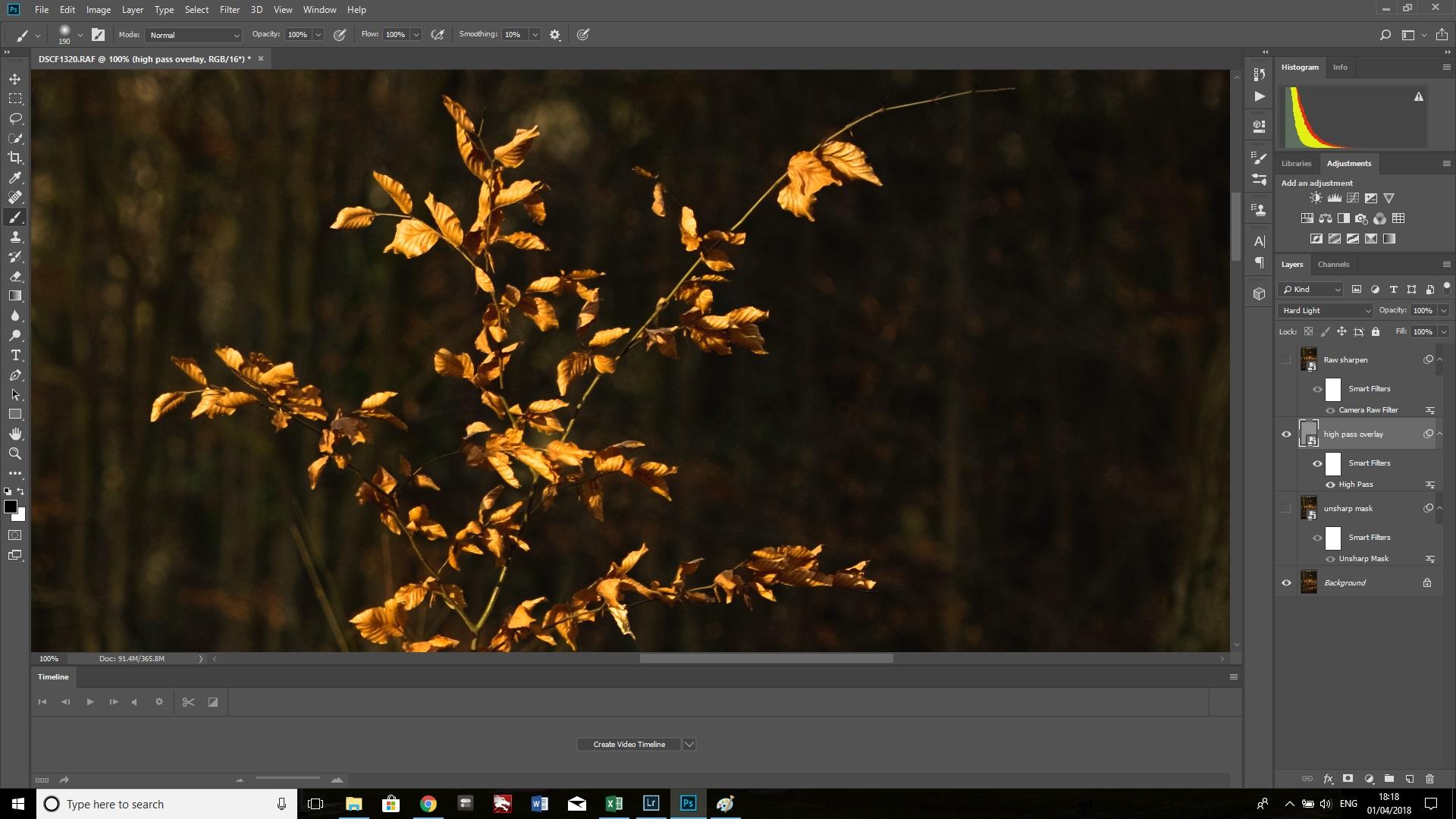 high pass overlay branches.jpg
