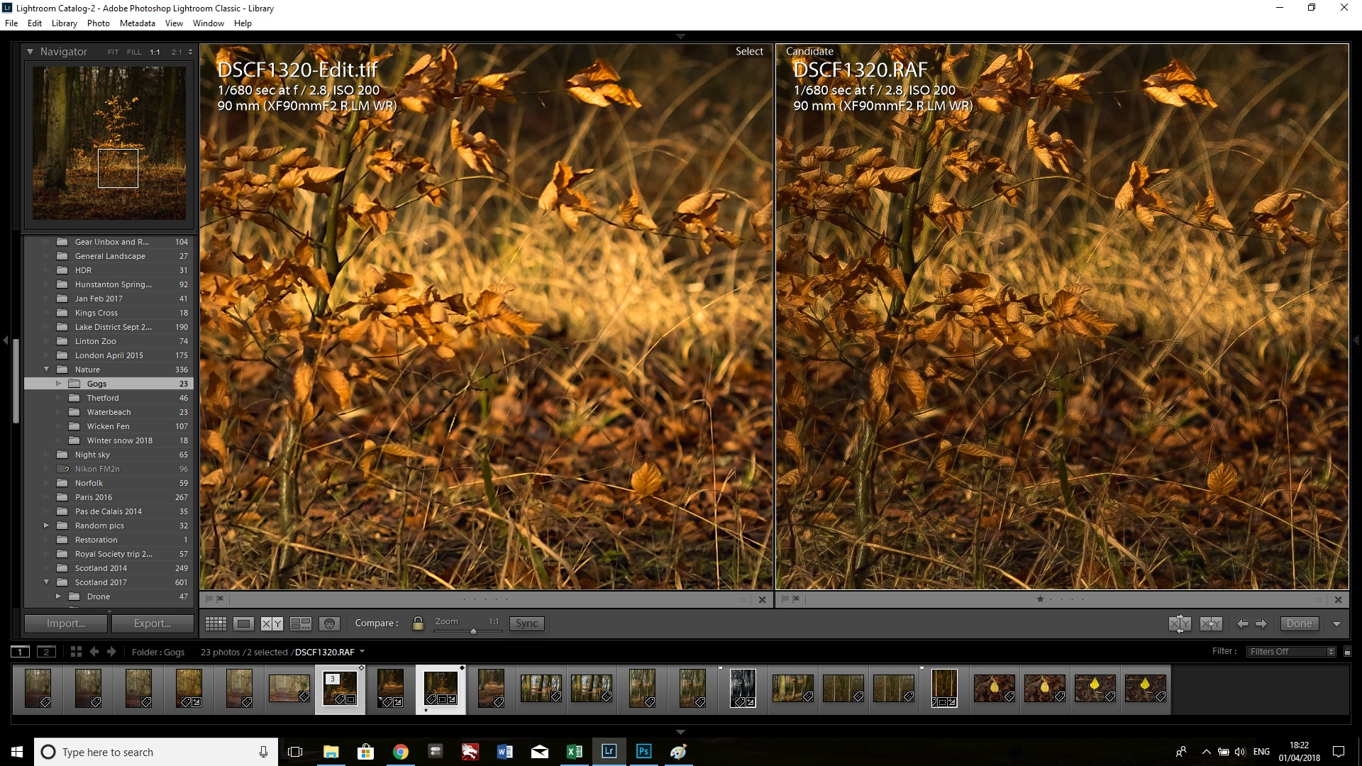 The improvement in sharpness and lack of artifacts on the PS sharpened image on the left is more noticeable in the grassy area at the bottom of the tree.