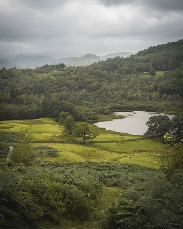 View to Grasmere, Lake District - August 2019  #lakedistrict #landscapephotography #lakes #rydalwater #rydal #grasmere #water #green #countryside #england #cumbria #moody #photography #landscape #panasonic #lumix #lumixg80 #britain