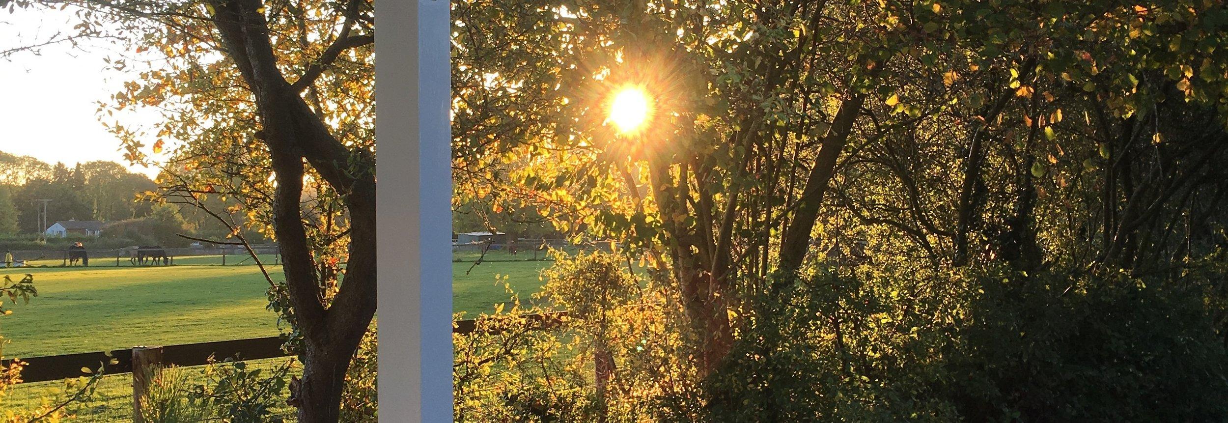 Fyfield Sunset