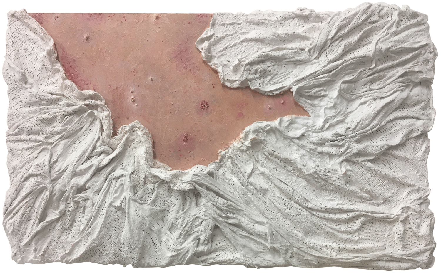 """Ripped Raw"" - Mixed media & oil paint on board - 35 cm x 60 cm -  SOLD"