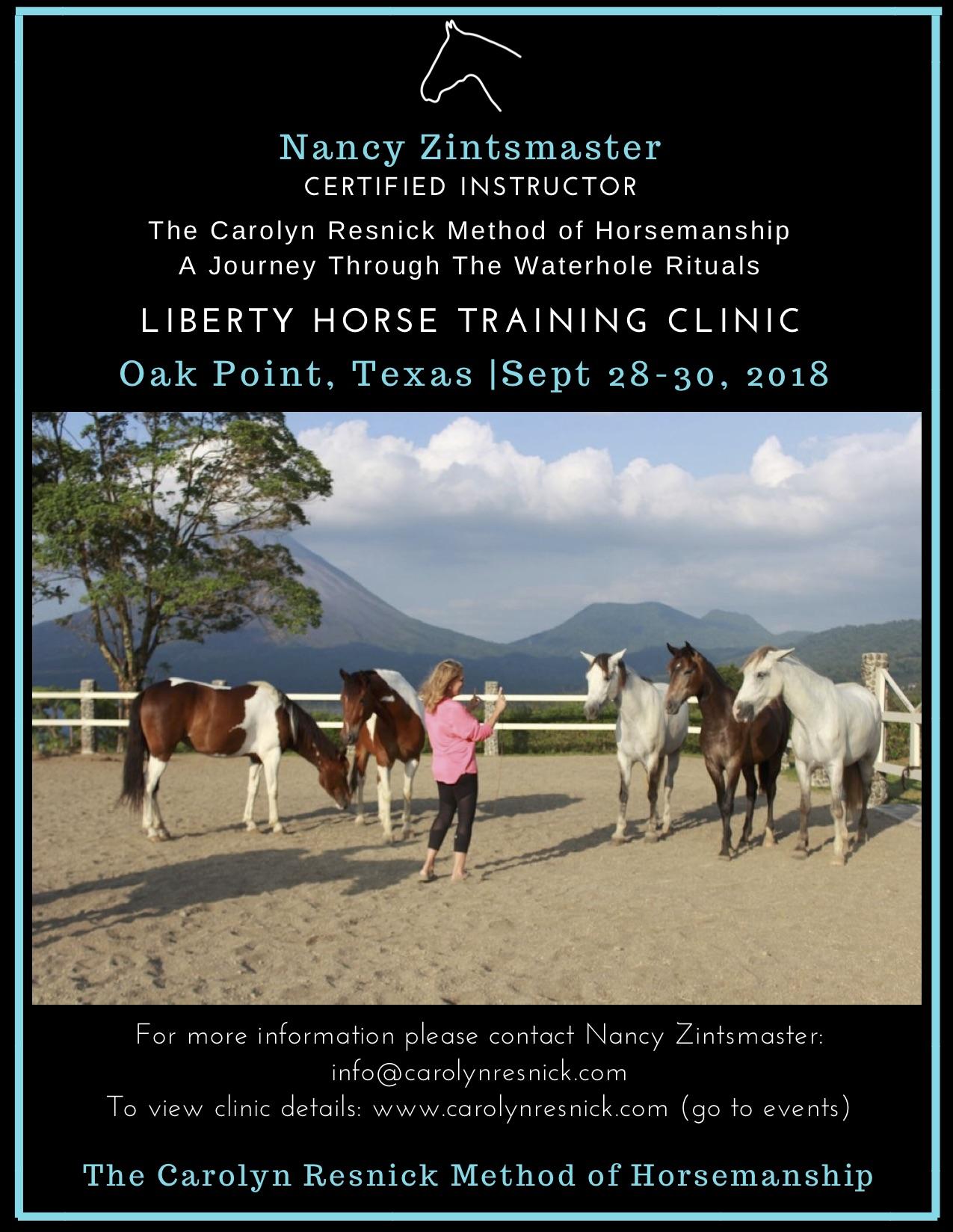 Karen clinic flyer final pick.jpg