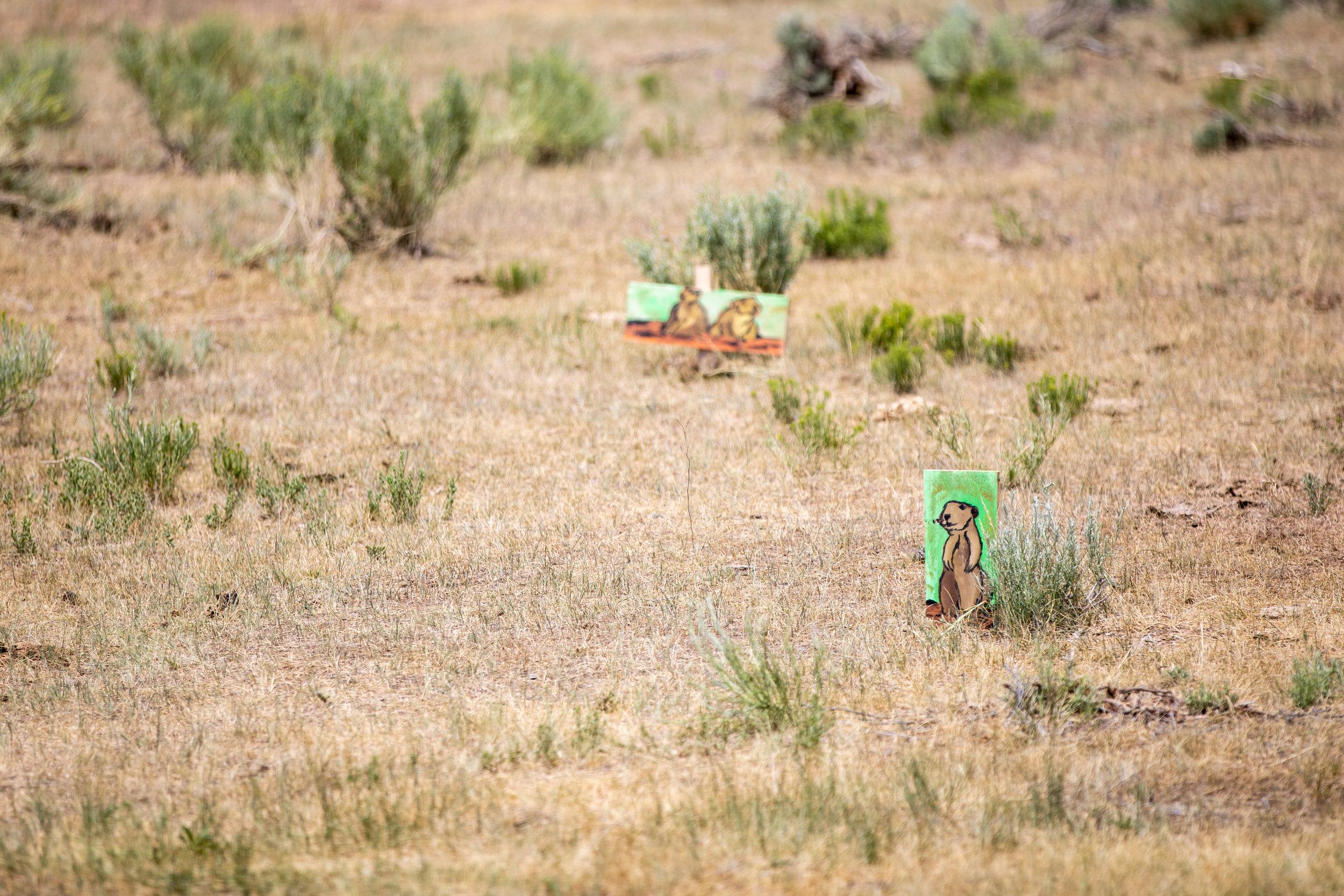 Shooting range setup pt. 2