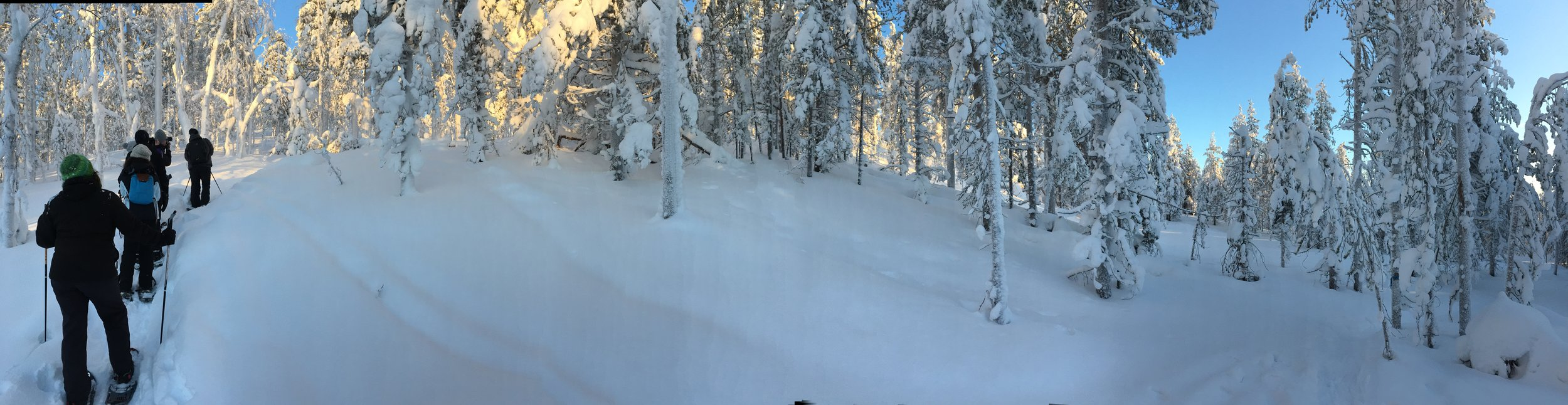 A day off skiing to go snow shoeing