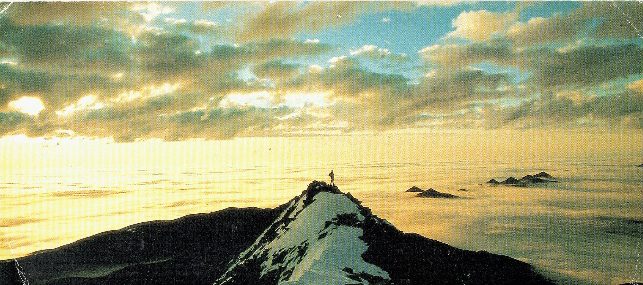 Postcard on my desk - copyright: C.H. Smith/P. Arnold/Bios