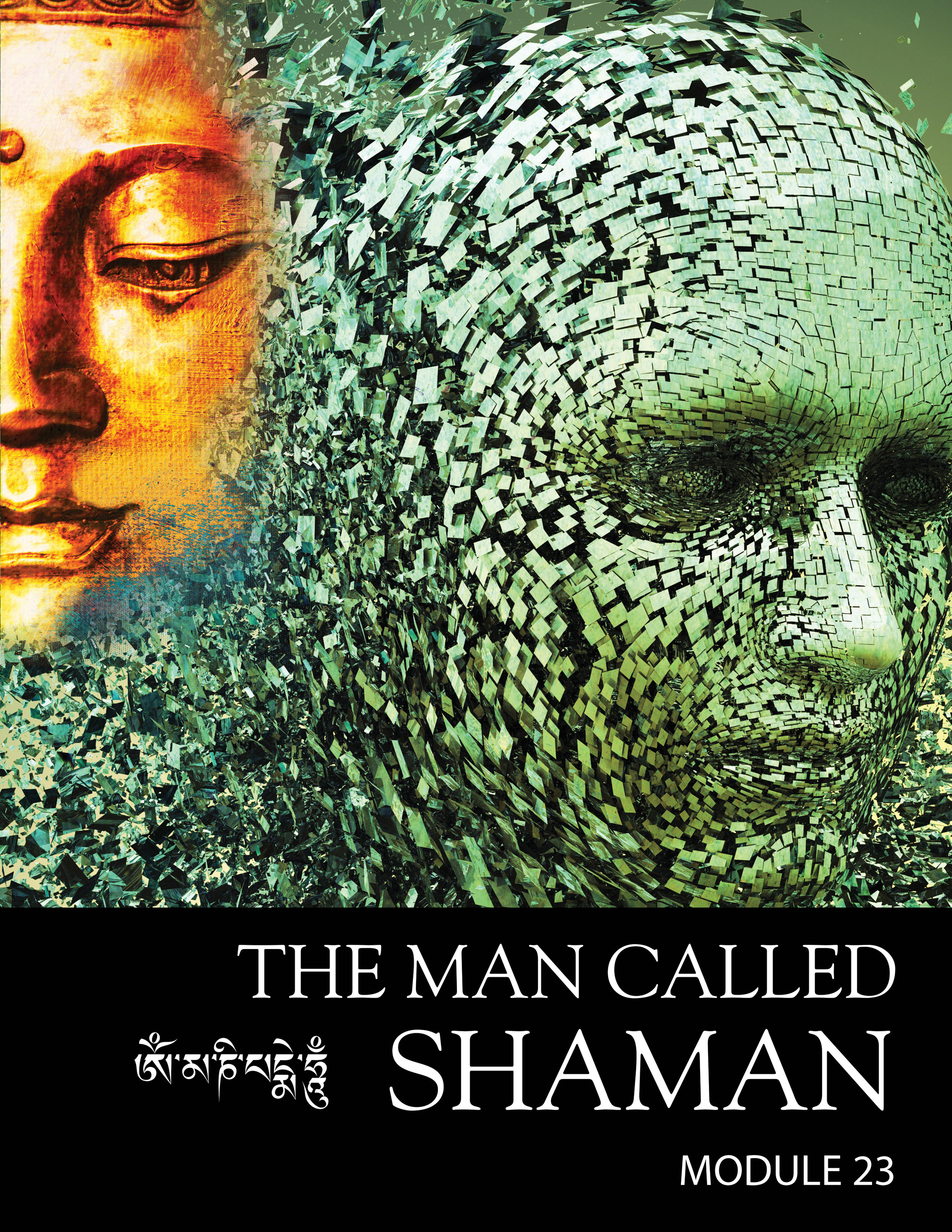 Shaman-Cover4-a.jpg