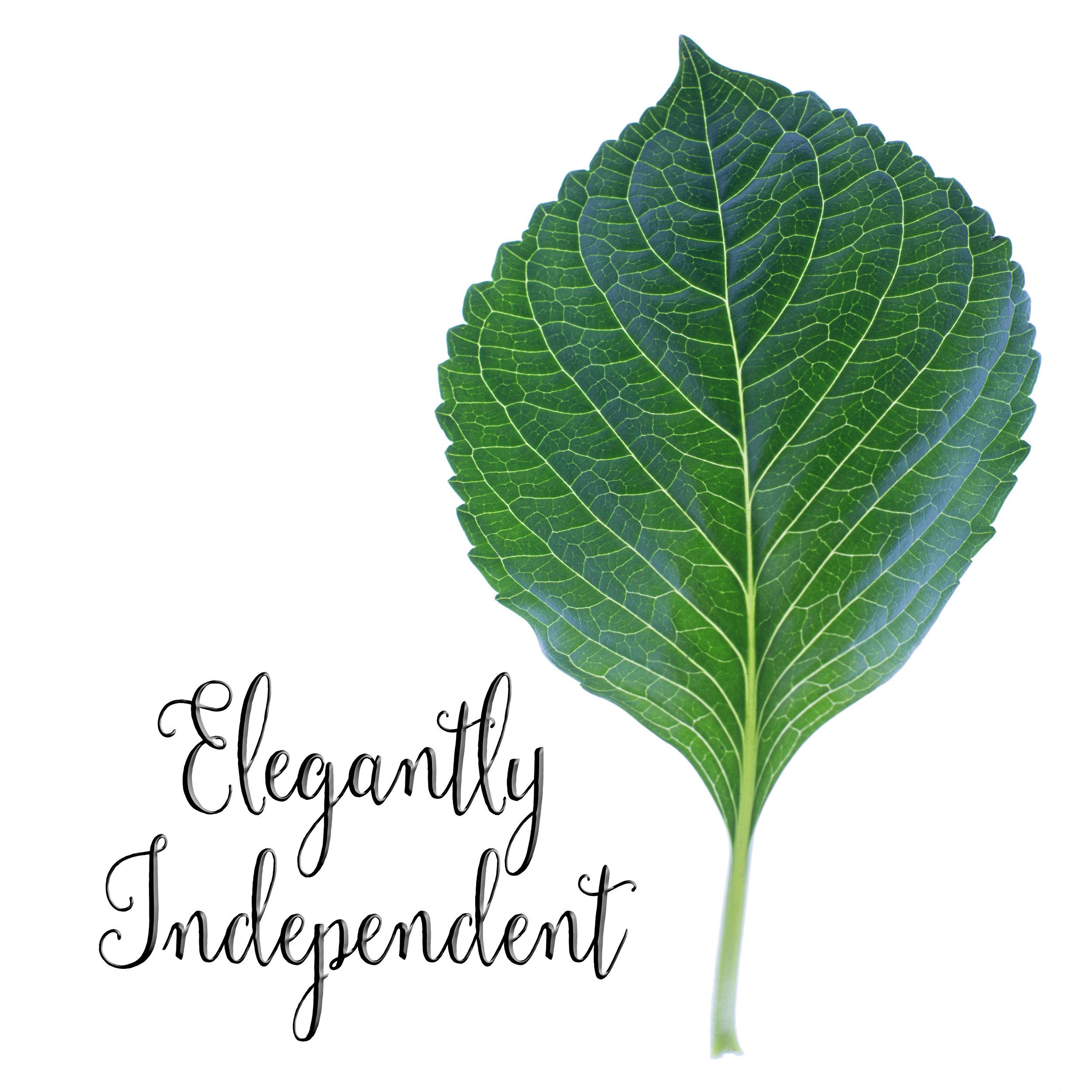 leaf with words.jpg