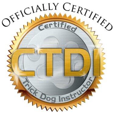 CTDI+certified.jpg