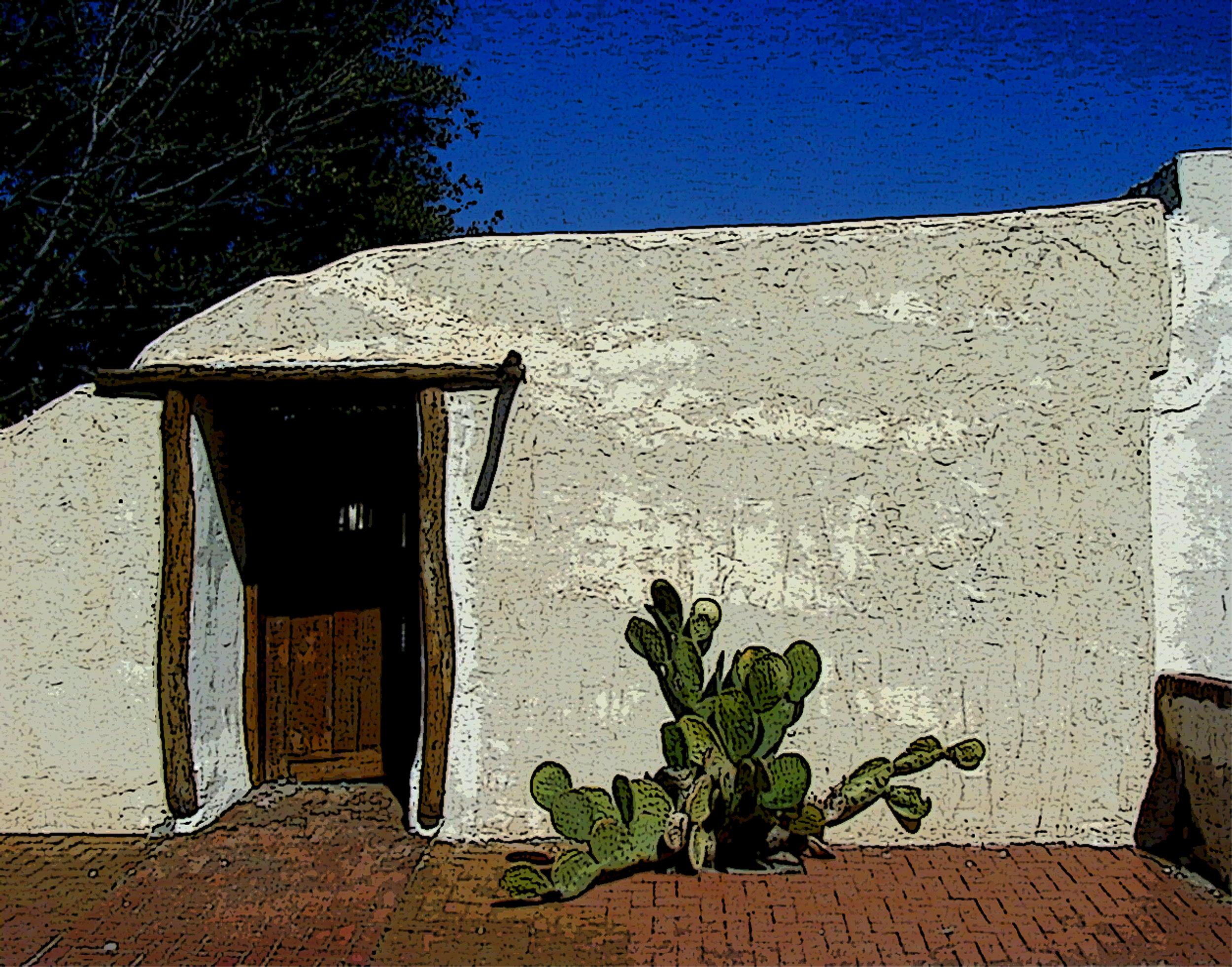 Cactus & Door-1 copy.jpg