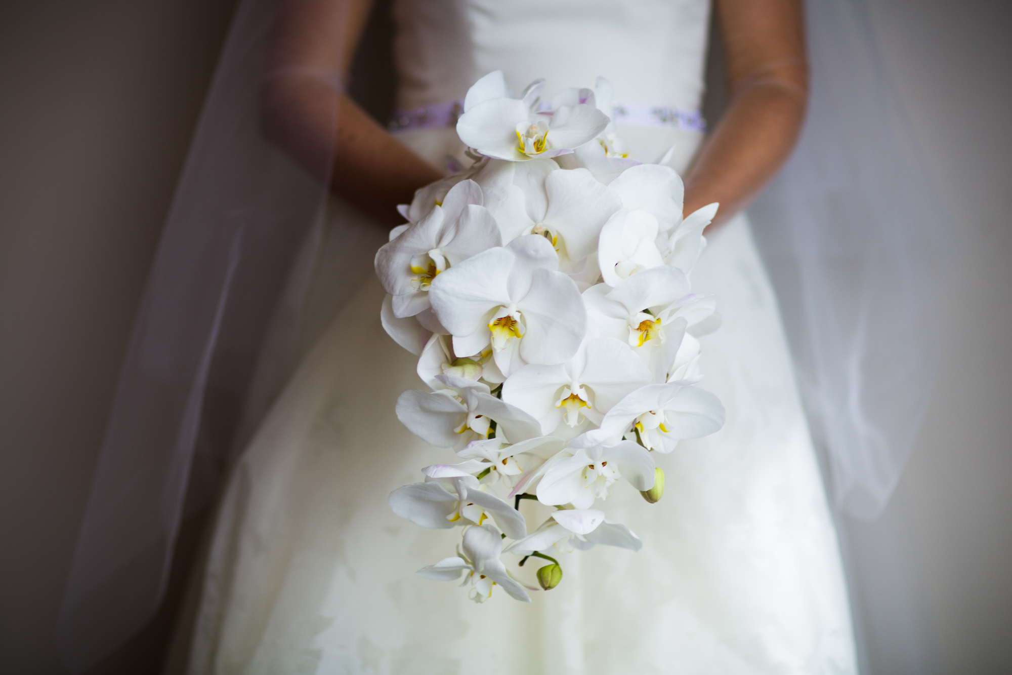 Orchid bridal bouquet for downtown Chicago wedding at Millennium Park Harris Rooftop.